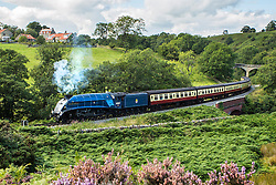 © Licensed to London News Pictures. 01/09/2015. Darnholme, UK. Picture shows the The Sir Nigel Gresley steam train travelling along the Goathland to Pickering line in the North Yorkshire Moors.Photo credit: Andrew McCaren/LNP