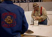 SWEETWATER, TX - MARCH 14: A Jaycees volunteer snake handler milks venom from western diamondback rattlesnakes brought in by hunters during the 51st Annual Sweetwater Texas Rattlesnake Round-Up, March 14, 2009 in Sweetwater, Texas. Approximately 24,000 pounds of rattlesnakes will be collected, milked for venom and the meat served to support charity. (Photo by Richard Ellis)