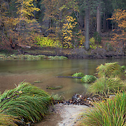 Fall Time on the Merced River in Yosemite Valley, CA.