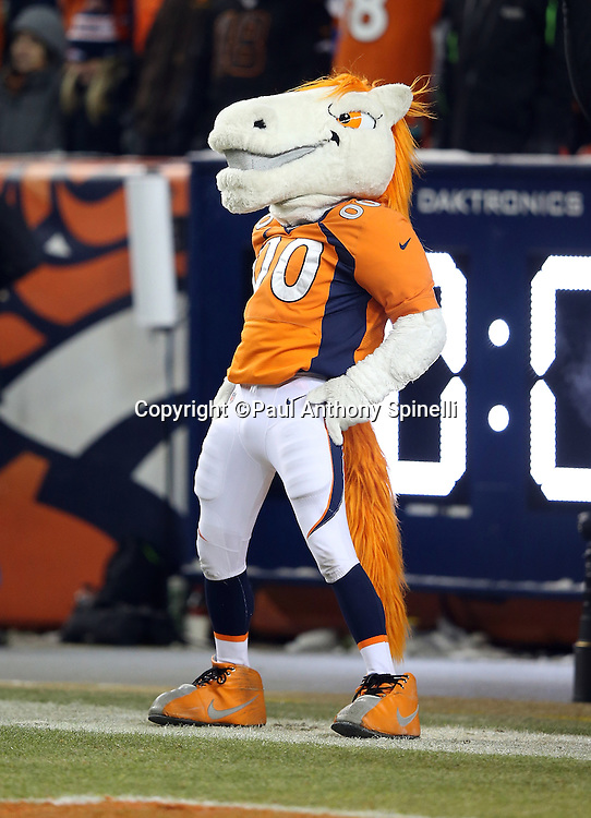 The Denver Broncos mascot celebrates after a field goal during the Denver Broncos 2015 NFL week 16 regular season football game against the Cincinnati Bengals on Monday, Dec. 28, 2015 in Denver. The Broncos won the game in overtime 20-17. (©Paul Anthony Spinelli)
