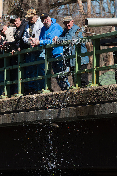 People watch from a bridge as a truck from the Department of Environmental Conservation releases trout into the Neversink River in Myers Grove, New York, on the opening day of trout season in New York State.  The DEC stocked 5,450 yearling brown trout and 550 two year-old brown trout in the Neversink.