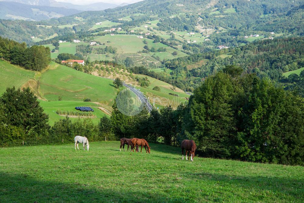 Paisaje del Goierri, Gipuzkoa, País Vasco ©Country Sessions / PILAR REVILLA