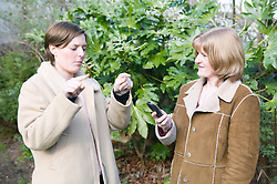 Woman with hearing impairment having a conversation with a friend using sign language,