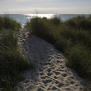 EASTVILLE, VA - JUNE 20: The dunes at Savage Neck Nature Preserve are pictured on Friday, June 20th, 2014 near Eastville, Va. (Photo by Jay Westcott/For The Washington Post)