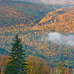 Fall foliage as seen from the Appalachian Trail at the Height of Land overlook on ME 17, in Rangeley, Maine.