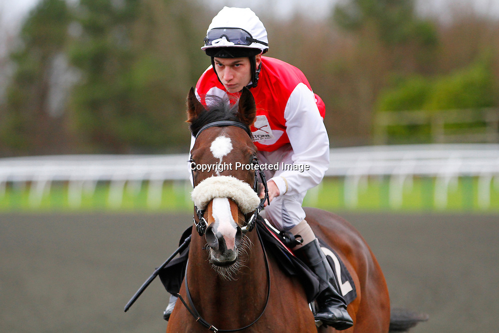 Boris The Bold and Luke Morris going to the start in the 1.05 race
