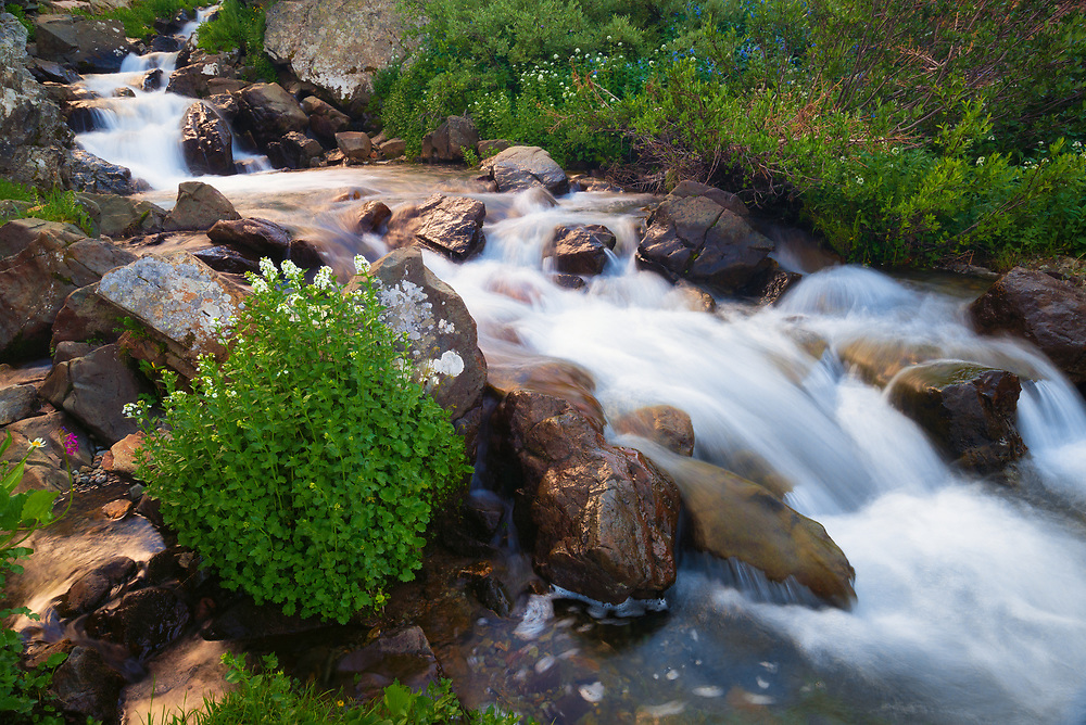 This is a picture of a pleasant stream in American Basin.<br />