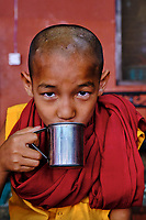 Nepal, Vallee de Kathmandu, Katmandou, village de Bodnath, monastère tibetain Tsechen Shedup Ling Sakya Tharig Monastery // Nepal, Kathmandu valley, Bodnath village, Tsechen Shedup Ling Sakya Tharig tibetan monastery