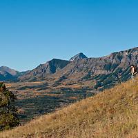 hunting photograph, rifle hunter western, western rifle hunter