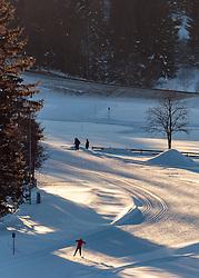THEMENBILD - Freizeitsportler beim Langlaufen auf einer Loipe, aufgenommen am 29. Jaenner 2017, Seefeld, Österreich // A freestyle athlete during cross-country skiing on ski track in Seefeld, Austria on 2017/01/29. EXPA Pictures © 2017, PhotoCredit: EXPA/ JFK