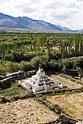 Stupa in Leh valley.