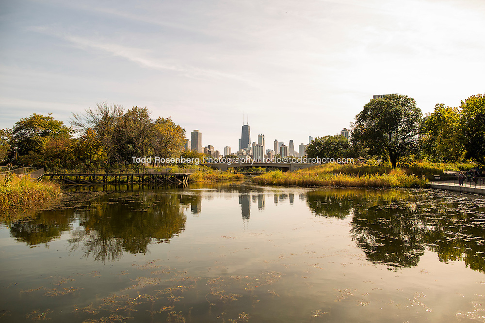 10/10/15 1:54:47 PM -- Chicago, IL, USA<br /> <br /> Lincoln Park Zoo Fall Festival <br /> <br /> . &copy; Todd Rosenberg Photography 2015