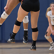 Fullerton, CA - Victoria Rodriquez of the Fullerton College Hornets waits to dig the ball during volleyball action at the net. The Hornets lost their November 5th match against the Gauchos of Saddleback College.