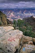 Tourist graffiti on rock wall near Yaki Point, South Rim, Grand Canyon National Park, Arizona
