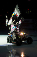 KELOWNA, CANADA - NOVEMBER 1: Rocky Raccoon, the mascot of the Kelowna Rockets enters the ice against the Kamloops Blazers on November 1, 2016 at Prospera Place in Kelowna, British Columbia, Canada.  (Photo by Marissa Baecker/Shoot the Breeze)  *** Local Caption ***
