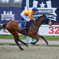 Frivolous Lady - John Egan wins<br /> The 32Red Casino Claiming Stakes<br /> Lingfield Park<br /> 17/2/16.<br /> &copy;Cranhamphoto.com