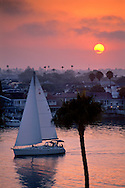 Catalina Sailboat cruises in harbor out to sea at sunset, from Inspiration Point, Corona del Mar, Newport Beach, California