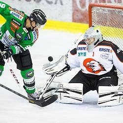 20131103: SLO, Ice Hockey - EBEL League, HDD Telemach Olimpija vs HC Orli Znojmo
