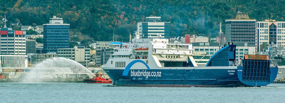 New Bluebridge inter island ferry Strait Feronia enters Wellington Harbour, Wellington, New Zealand, Monday, June 01, 2015. Credit:SNPA / Derek Quinn