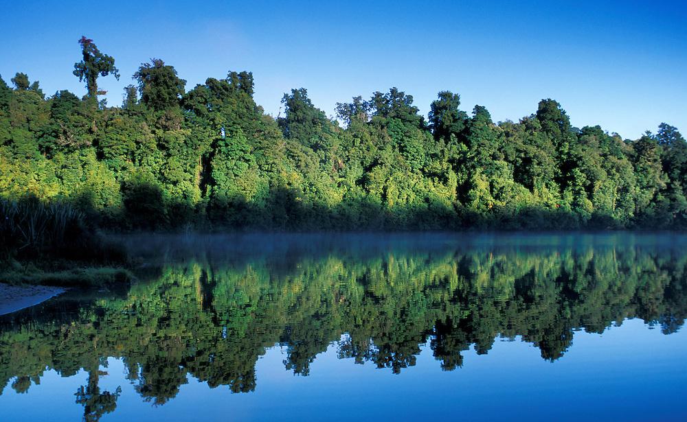 Reflection, Lake Mapourika, West Coast, South Island, New Zealand