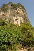 Rock climbing limestone cliffs, Vang Vieng, Laos