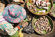 14 MARCH 2006 - PHNOM PENH, CAMBODIA: Women selling fresh fish at the pasr char or Old Market in central Phnom Penh, Cambodia. Cambodians, like many in developing world, do their food shopping every day because most people lack reliable modern refrigeration. Most of the fish sold in the market are sold the day they are caught and many are sold still alive. The Tonle Sap River, an important source of fresh water fish for Phnom Penh is only a few blocks from the market. Photo by Jack Kurtz / ZUMA Press