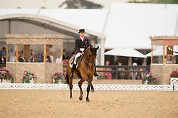 Davidson Richard, GBR, Rubins Nite<br /> CDI4* Grand Prix <br /> Royal Windsor Horse Show<br /> © Hippo Foto - Jon Stroud