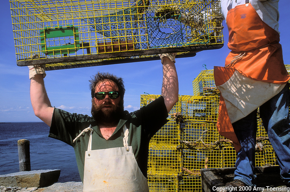 MONHEGAN ISLAND, MAINE - MAY 18: Lobsterman Mattie Thomson works with his sternman at the end of the season to transport his lobster traps to be stored away for the off season, May 18, 2000 on Monhegan Island, Maine. Monhegan Island, home to lobstermen and painters and a popular destination for tourists is twelve miles off the coast of Maine. Ringed by high, dark cliffs, its interior a mix of meadows, marsh and spruce groves, Monhegan is one of just 14 true island communities left off the coast of Maine. The island has a 65 permanent, year-round residents and the population grows to around 200 in the summer, with day-trippers adding several hundred more. (Photo by Amy Toensing) _________________________________________<br />