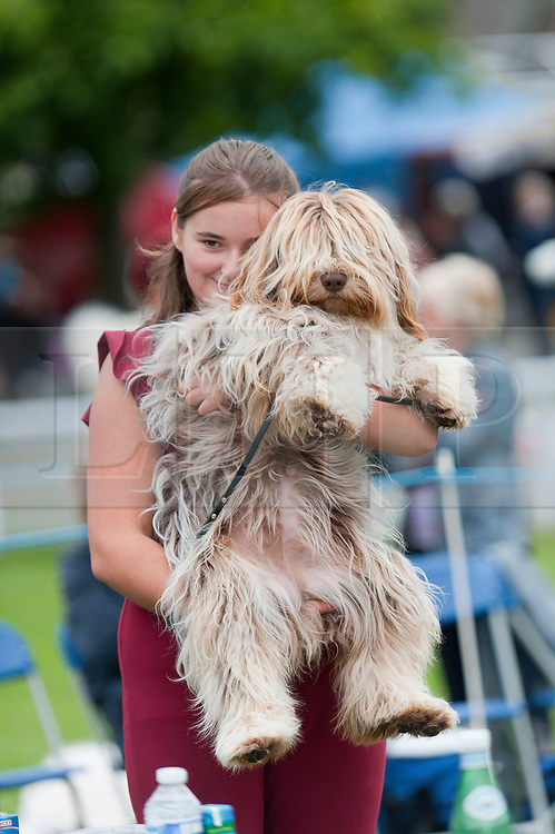 © Licensed to London News Pictures. 18/08/2018. Llanelwedd, Powys, UK.  Hannah holds Coco a Polish Lowland Shepdog after winning best bitch overall on the second day of The Welsh Kennel Club Dog Show, held at the Royal Welsh Showground, Llanelwedd in Powys, Wales, UK. Photo credit: Graham M. Lawrence/LNP