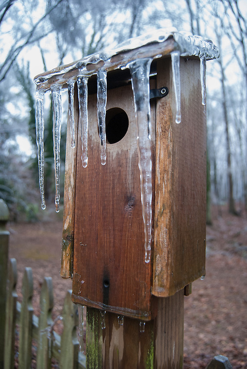 Birdhouse Cover with Winter Ice
