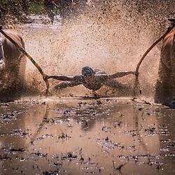 Indonesia - Sumatra - Pacu Jawi - Bull Race