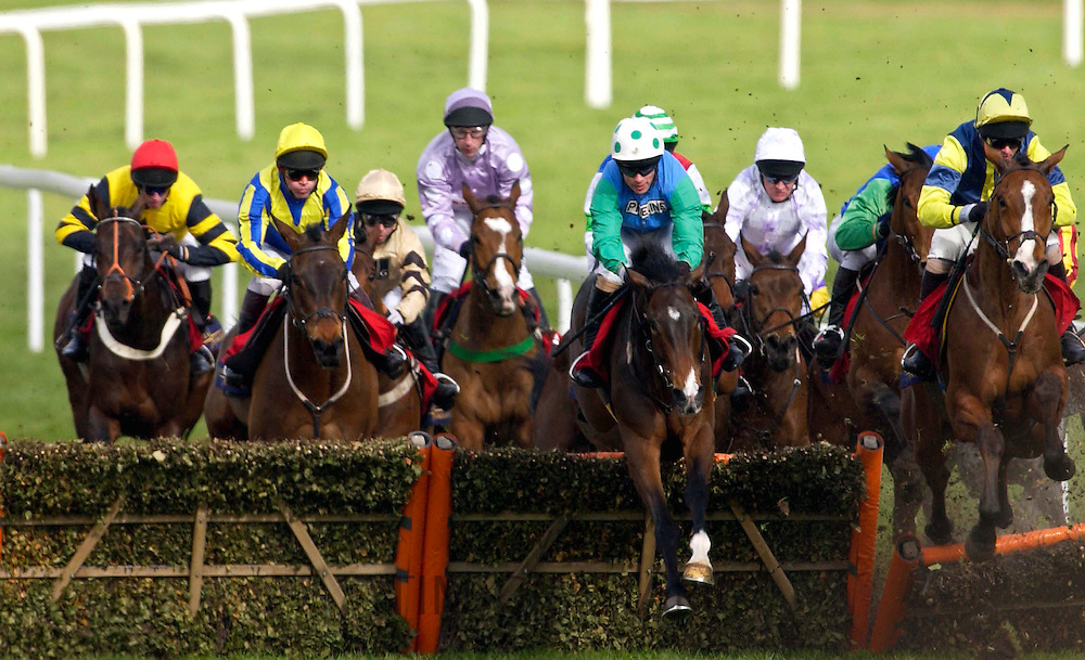 The National Hunt Festival of Horseracing - jockeys jumping one of the fences