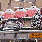 Rudolph the red nosed pig, Pike Place Market, Pigs on Parade, Christmas decorations in snow storm, Seattle, Washington