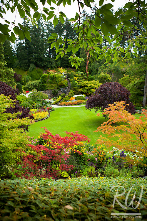 Sunken Garden Fall Foliage at Butchart Gardens, Vancouver Island, B.C.