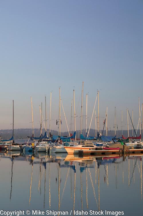 Idaho, Valley County, McCall, Payette Lake. Sailboats docked at sunrise.