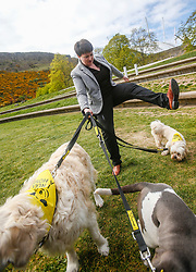 MSPs display their dogs and put them through an agility course with the winner decided by a public vote on the day.<br /> <br /> Pictured: Ruth Davidson with three of the Dogs Trust rescue dogs