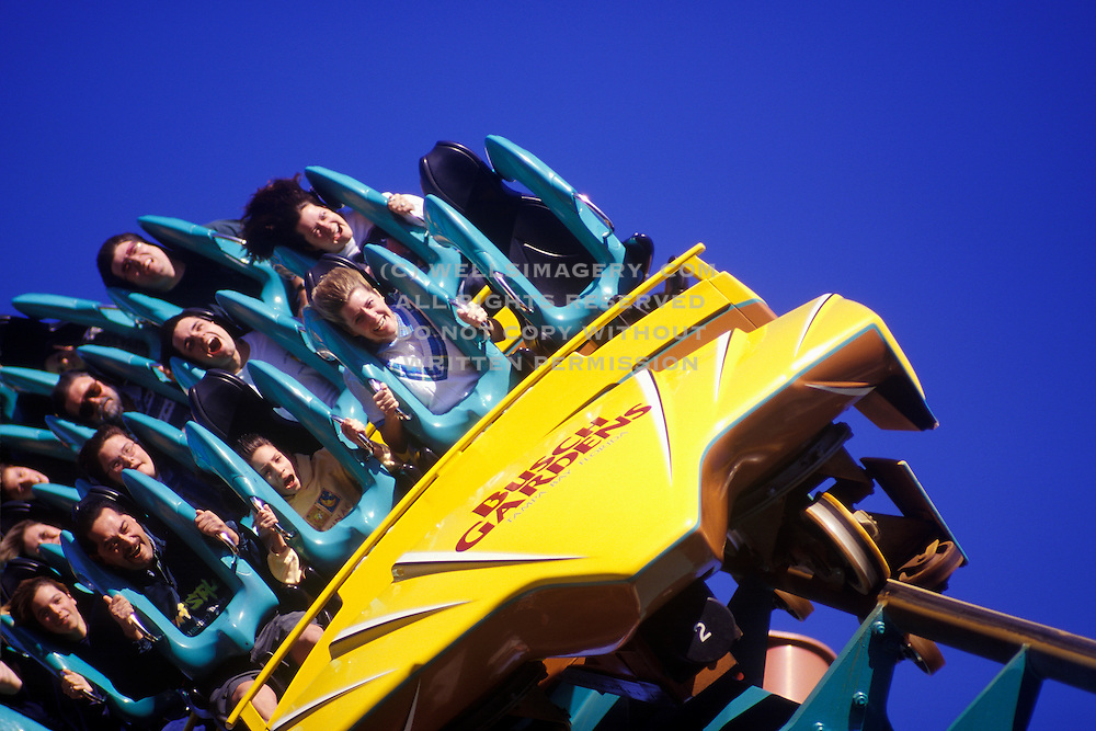 Image of a rollercoaster ride at Busch Gardens Tampa Bay, Tampa, Florida, American Southeast