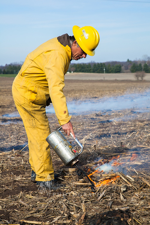 Using this drip torch, a diesel and gas mix is ignited to burn the numerous corn 'haystacks' in preparation for a new prairie planting. The 'haystacks' must be removed to prevent dead spots in the new prairie as plants sprout in the spring.