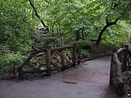 The Ramble near Azalea Pond in Central Park