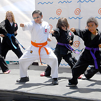 Santa Monica Chamber of Commerce's 27th Annual Health and Fitness Festival