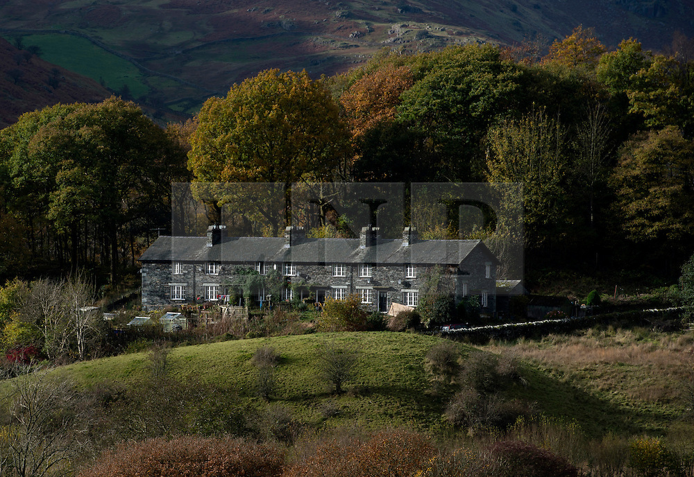 © Licensed to London News Pictures. 07/11/2016. Lake District, UK. Autumn colours on display in the Langdale Valley, Lake District.  Photo credit: Anna Gowthorpe/LNP