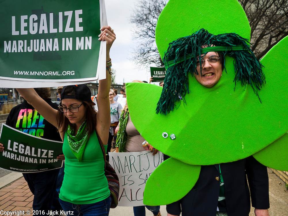 20 APRIL 2016 - ST. PAUL, MN:  ANDY SCHULER, from Golden Valley, MN, dressed as a marijuana plant at a rally for marijuana legalization in St. Paul. About 100 people gathered at the Minnesota State Capitol in St. Paul and marched through downtown St. Paul calling for the decriminalization of marijuana. April 20 (4/20) has become a sort of counter culture holiday in the US, with marches in many cities calling for the legalization of marijuana.     PHOTO BY JACK KURTZ