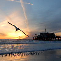 Santa Monica Beach amid the sunset on Sunday, February 20, 2011.