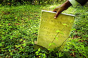 "(05/22/05) -- Columbia, SC ---Ron Ferg, a retired art educator and local artist, touches a headstone of what he considers to be an old slave cemetary off of Bluff Road near Rock Hill AME Church Sunday. Berg, who grew up on Bluff Road remembers walking the area for over 20 years until one day discovering the site. ""It looks like one family,"" he said. ""Some people say there used to be a church back there. I bet you could find the foundation if you look closely."""