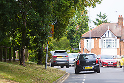 A sign that warns motorists of a sharp left hand bend and a 20 MPH speedlimit on Larkshal Road in Chingford where trees are obscuring motorists' views of roadsigns that often impart crucial speed or safety information only at the last minute. London, July 17 2019.