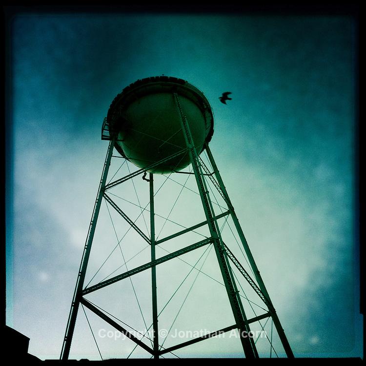 Bird flies past Sony Studios water tower in Culver City
