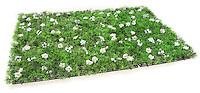 grass door mat with white flowers