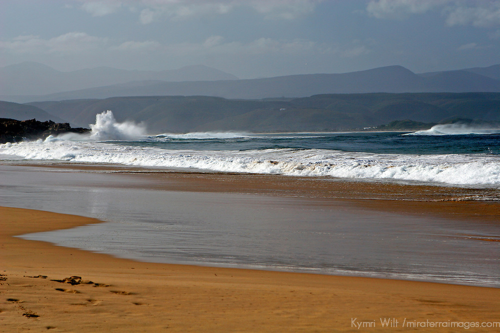 Africa, South Africa, Plettenberg.. Beach at Plettenberg Bay along the Garden Route, South Africa.