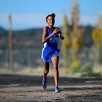 110114  Adron Gardner/Independent<br /> <br /> Navajo Pine Warrior Annoesika Laughlin charges to the finish line during the district cross country meet in Navajo Saturday.