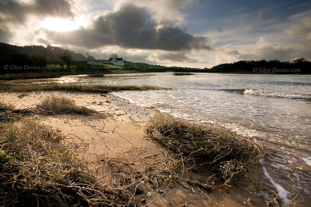 At low tide here at Traeth Coch (Red Wharf Bay) on East Anglesey, you can't even see the sea, but at high tide this usually calm sea advances right up the estuary towards Pentraeth village.